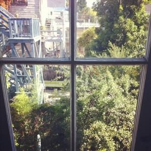 My neighborhood window
